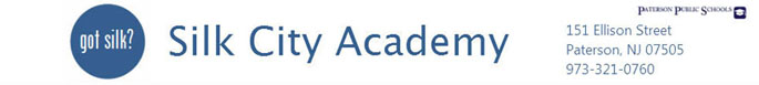Silk City Academy 2000  Logo